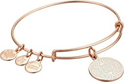 Alex and Ani - Words are Powerful Blessed Bangle