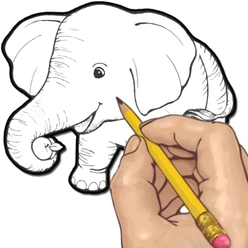 How to Draw: Wild Animals