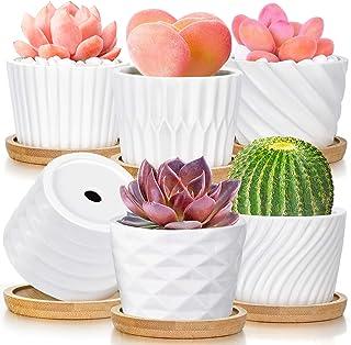 Succulent Pots, White Ceramic Pots for Plants Set