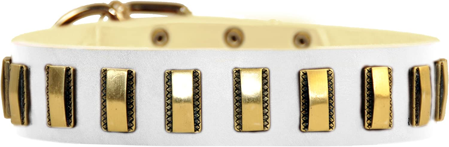 Dean & Tyler Brass Line Leather Dog Collar with Solid Brass Plates, 22 by 11 2Inch, Fits 20 to 24Inch Neck, White
