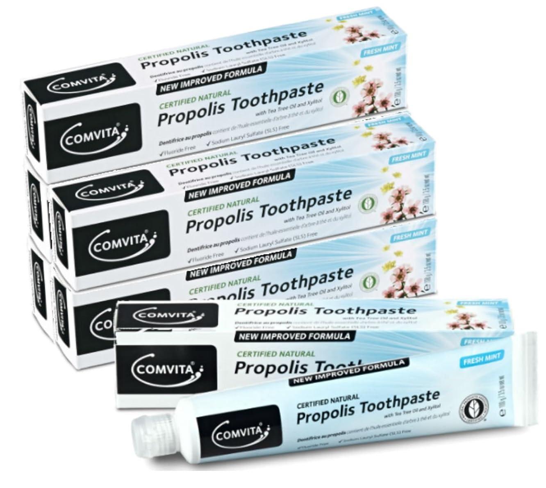 メンダシティバーガー統合するプロポリス歯磨き コンビタ アピセラ歯磨き (100g) お得な6本セット ティーツリーオイル配合