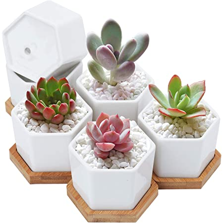 Details about  /Humanoid Ceramic Flower Pots Vase Succulents Container Mini Pot Planter Utility