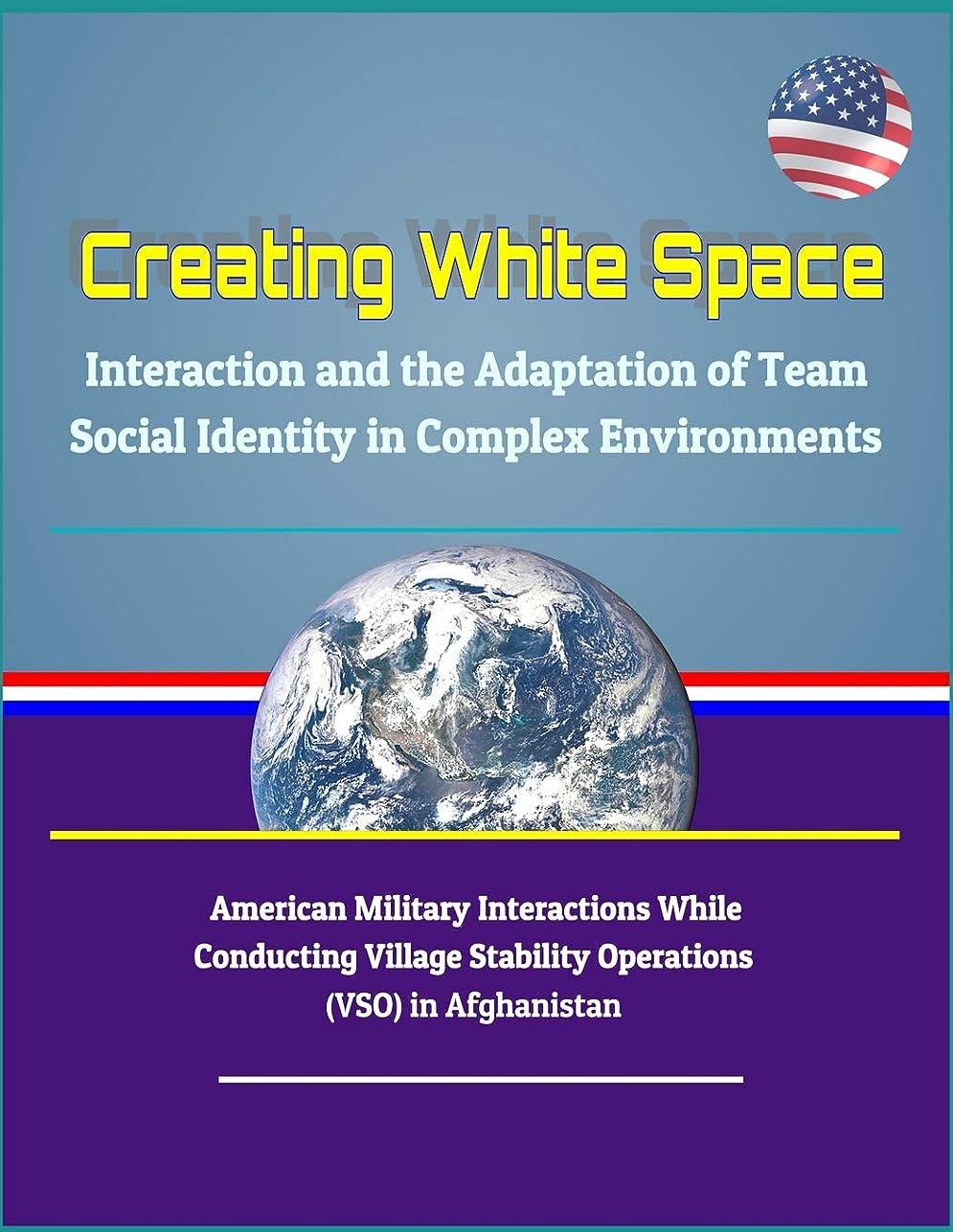 ブレーキ染料フィクションCreating White Space: Interaction and the Adaptation of Team Social Identity in Complex Environments - American Military Interactions While Conducting Village Stability Operations (VSO) in Afghanistan