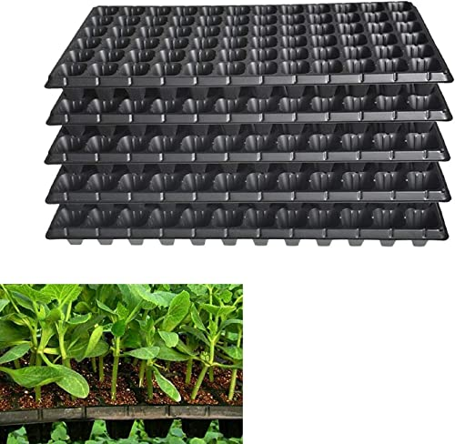 2021 labworkauto 10PCS 72 Cell Seed Tray, BPA wholesale Free Plastic Gardening Germination Trays with Drain Holes Reusable Plant Grow Plug Trays Mini Propagator Fit online sale for Seeds Growing Plant Seedlings Propagation online sale