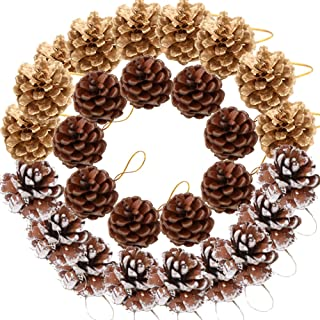 Yarssir 27 Pieces Pine Cones Ornament Natural PineCones String Pendant Crafts Gift Tag Tree Party Hanging Decoration(Multi Color-27 Pack)