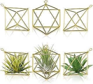 Yesland 6 Packs 2.4 Inch Air Plant Holder, Modern Geometric Metal Planter, Minimalist, Himmeli Style & Easy to Hang Desi...