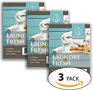 Laundry Fresh-Everydaycollection Wax 3 packs - Scented Wax for Warmers