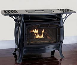 Duluth Forge FDSR25-GF Dual Fuel Ventless Gas Stove, Gloss Finish, Remote Control, 26,000 BTU