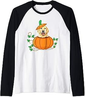 Funny Thanksgiving Labrador Retriever In a Pumpkin Gift Raglan Baseball Tee
