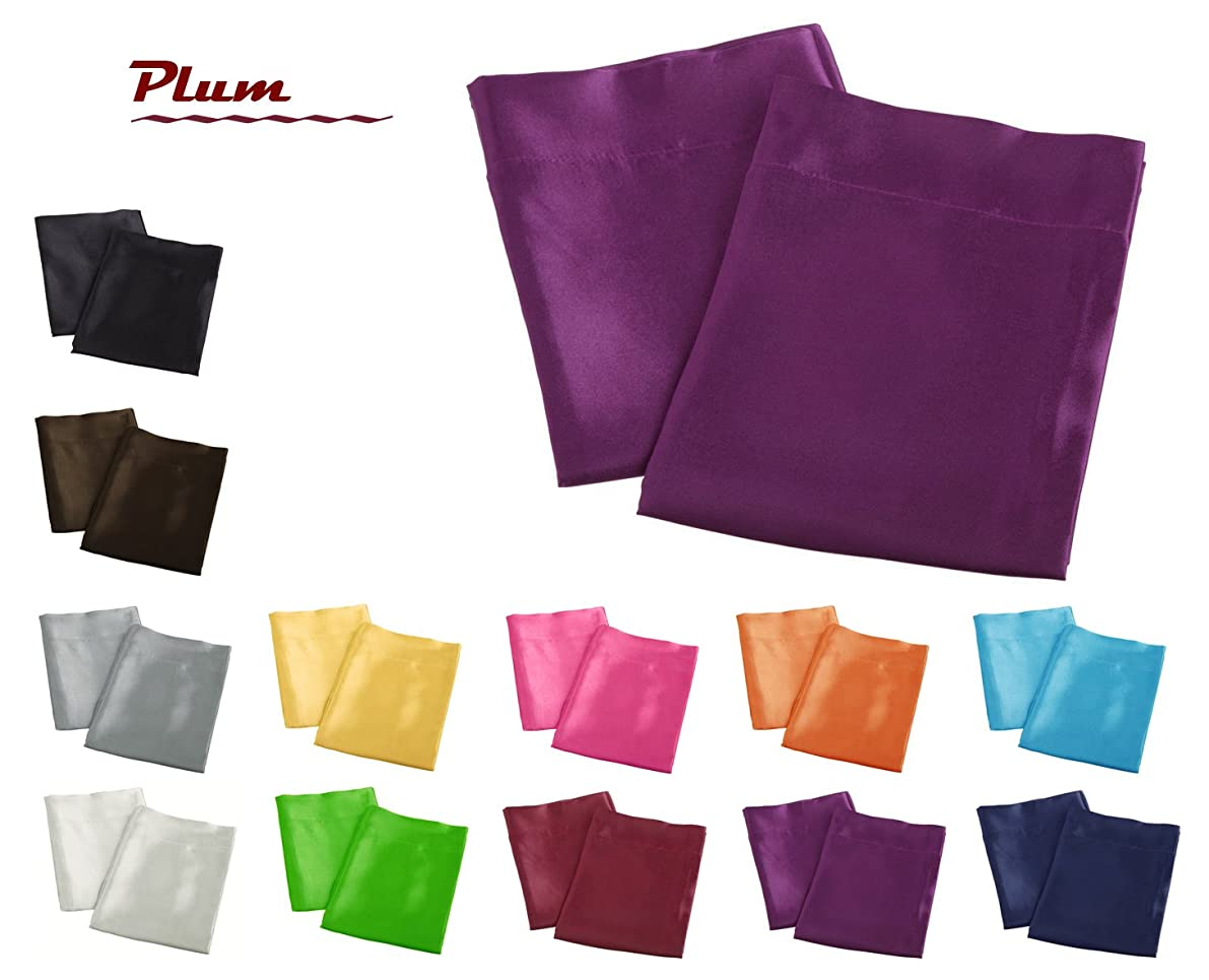 Aiking Home 2 Pieces of Colorful Shiny Satin King Size Pillow Cases, Plum