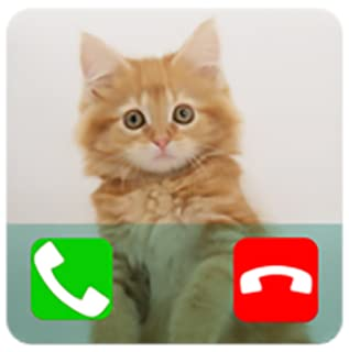 Fake Call From Cat Prank ( Calling Prank From Pet )