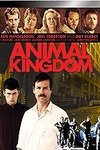 Best new season animal kingdom Reviews