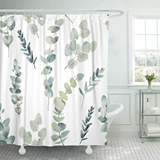 Emvency Fabric Shower Curtain with Hooks Green Leaf Watercolor Eucalyptus Branches Hand Floral with Plant on White Natural Twig 72