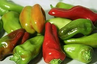 Pepper Sweet,- Cubanelles Or Italian Sweet Frying Pepper, 50 Organic Seeds