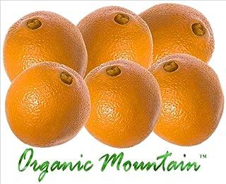Navel Oranges from Organic Mountain