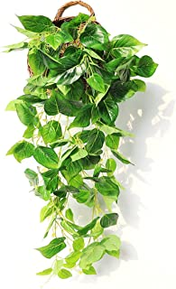 Best JUSTOYOU Artificial Hanging Plants Ivy Vine Fake Leaves Greeny Chain Wall Home Room Garden Wedding Garland Outside Decoration 3FT 1PCS(Scindapsus Vine) Review