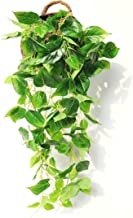 JUSTOYOU Artificial Hanging Plants Ivy Vine Fake Leaves Greeny Chain Wall Home Room Garden Wedding Garland Outside Decorat...