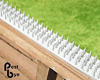 Best sharp fence spikes Reviews