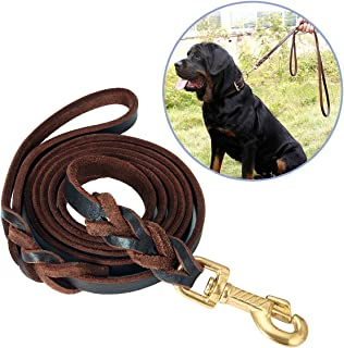 Best picture of a dog leash Reviews