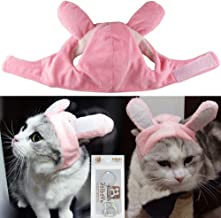 Best how to make kitten play ears Reviews
