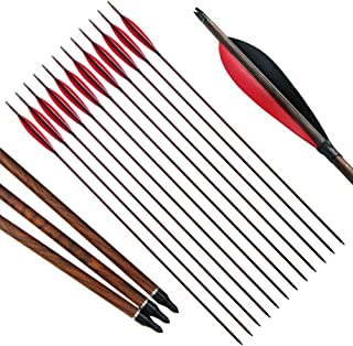 PG1ARCHERY 30 inch Archery Carbon Targeting Arrows Hunting Practice Arrow Sports Turkey Feather Fletching Replacement Points Tips Recurve Compound Bow, 12 Pack