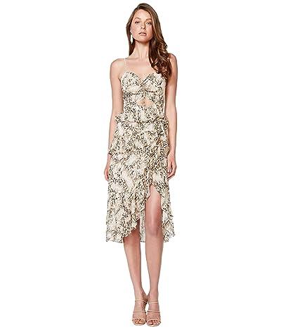 Bardot Briana Dress (Nude Leopard) Women