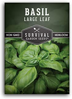 Survival Garden Seeds - Large Leaf Basil Seed for Planting - Packet with Instructions to Plant and Grow in Your Home Veget...