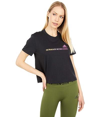 adidas Gradient Logo Cropped Tee (Black) Women
