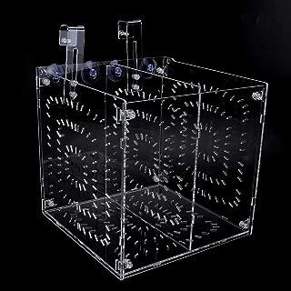SALUTUYA Inkubationsbox für Aquarien Hohe Durchlässigkeit, Inkubation für Setzlinge für verletzte, kranke Fische(20MC *20CM*20CM)