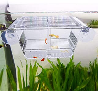 capetsma Fish Breeding Box, Acrylic Fish Isolation Box with Suction Cups, Aquarium Acclimation Hatchery Incubator for Baby...
