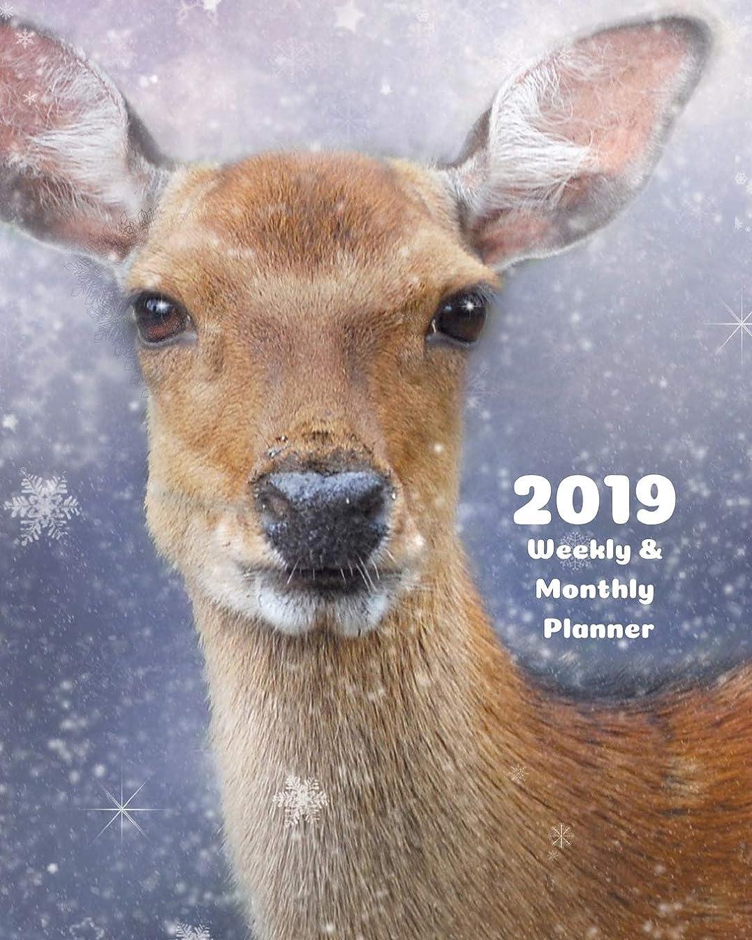 デンプシー難破船不安定な2019 Weekly and Monthly Planner: Deer Daily Organizer -To Do -Calendar in Review/Monthly Calendar with U.S. Holidays–Notes Volume 39