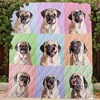 Cute Pug - Quilt R156, Queen All-Season Quilts Comforters with Reversible Cotton King/Queen/Twin Size - Best Decorative Quilts-Unique Quilted for Gifts