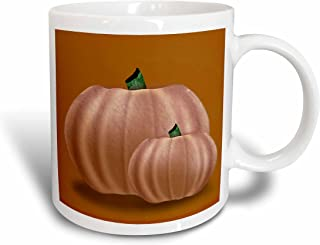 3dRose Graphic Design of Pumpkins on Vintage Fall Colored Background Mug, 11-Ounce