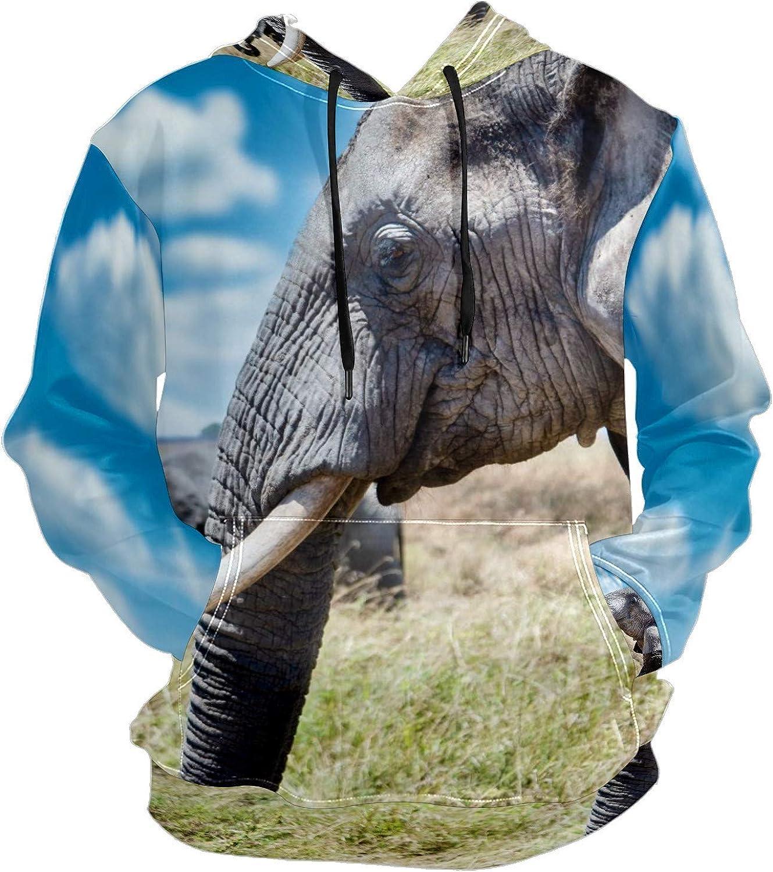 Cute Elephant Wilderness Mens Sport Hoodie Big and Tall Hoodies for Men Women Oversized Hooded Sweatshirt Hip Hop Pullover Hoodie Midweight Hood for Boys Girls