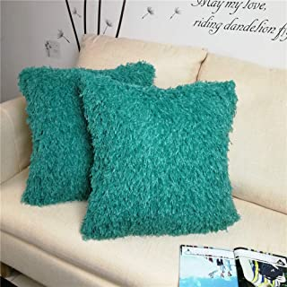 Best teal fur pillow Reviews