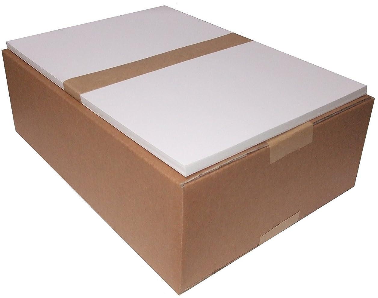 めんどり家具ウミウシ【光沢/厚紙】 レーザープリンターA4サイズ用紙 コート紙<90kg>100枚 A4-100-C90