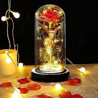 DASIAUTOEM Rose Eternelle sous Cloche, La Belle et la Bête Rose Eternelle, Rose Galaxy Dôme en Verre Fleur Artificielle av...