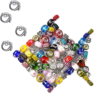 140 Pcs DIY Jewelry Making Kit Gift for Adults and Kids, European Lampwork Chamilia Beads Metal Spacer Beads Rhinestone Ch...