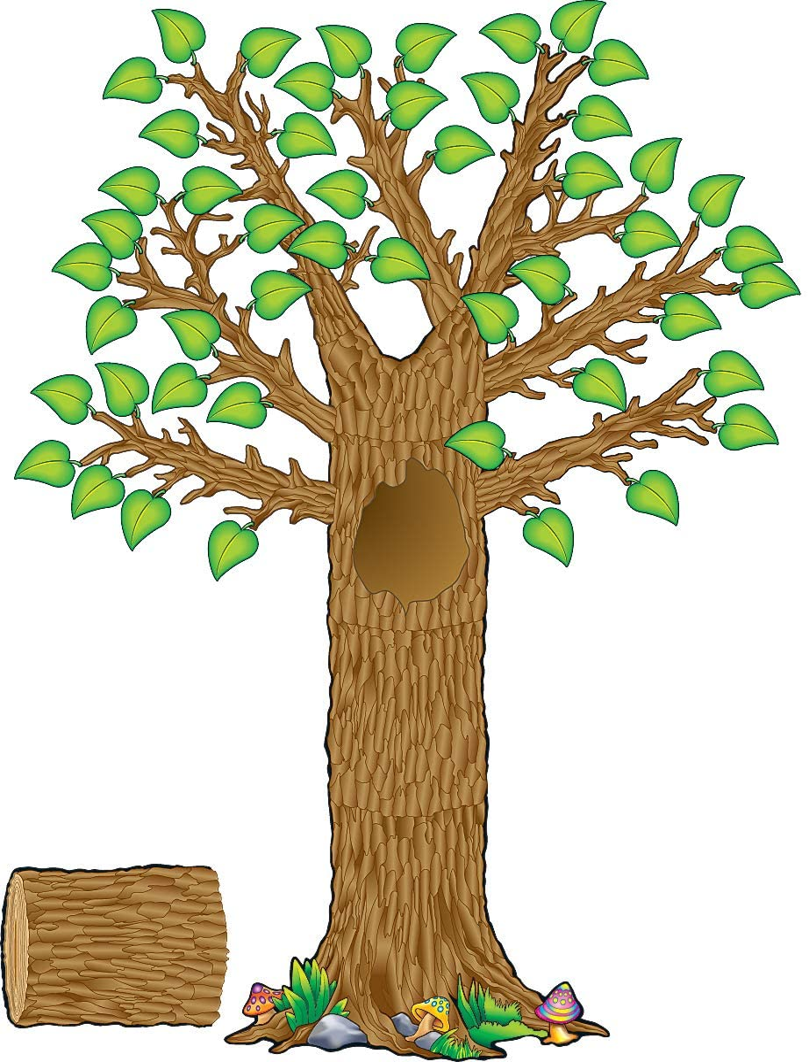 Teacher Now on sale Created Ranking TOP17 Resources Seasonal Tree Board Display Bulletin S