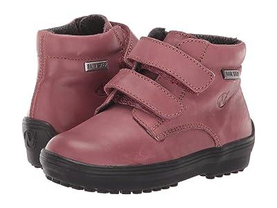 Naturino Terminillo AW19 (Toddler/Little Kid) (Pink) Girl