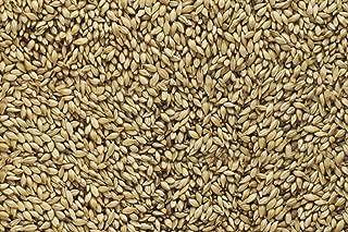 Malt - Briess - Brewers Malt 2-Row (50 lb Sack)