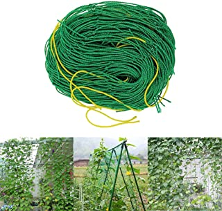 FasterShipStore Durable Nylon Trellis Net Support Plants Garden Netting, Indoor Vine Trellis - Angel Trellis, Agtec Trellis Support Netting, Vine Netting, Vine Support, Grape Vine Trellis System
