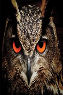 Hoot Hoot Hooray: Owl Journal   Owl Notebook book   Owl gifts for women men boy girl teens student kids gift   hoot owl gi...