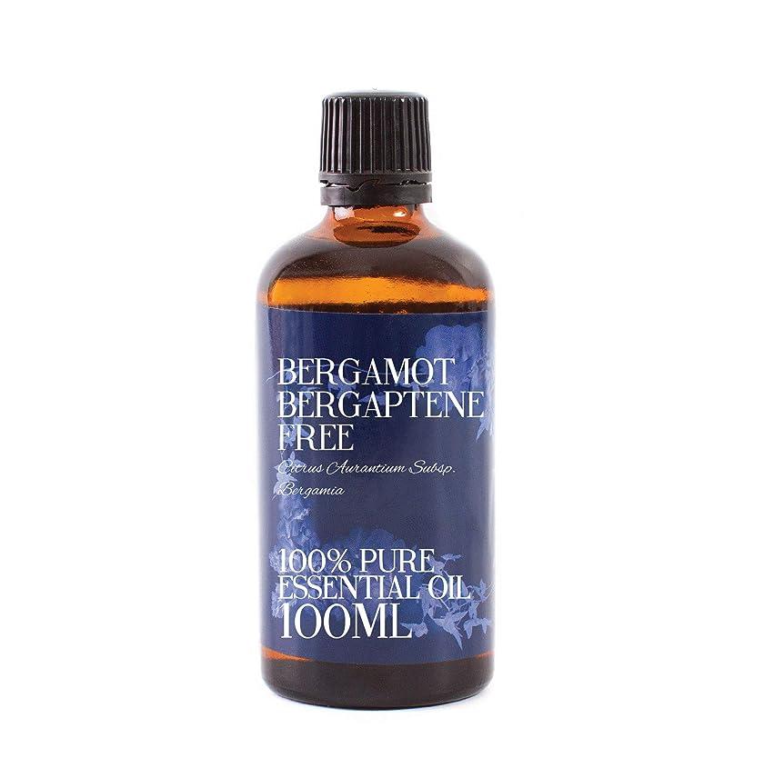 アクセス支配的シンジケートMystic Moments | Bergamot Bergaptene Free Essential Oil - 100ml - 100% Pure