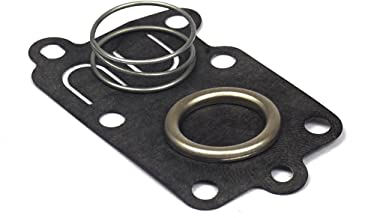Briggs & Stratton Diaphragm Kit 5021K