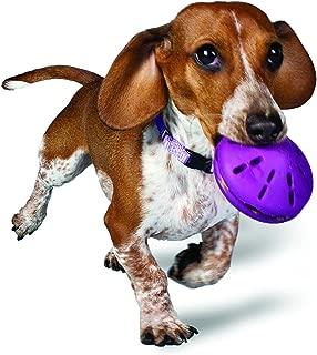PetSafe Busy Buddy Twist 'n Treat, Treat Dispensing Dog Toy, Small