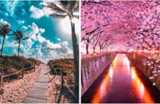 Leyzan 2 Pack 5D Diamond Painting Sunshine and Cherry Blossoms Trails Pathway Full Drill Paint with Diamond Art, DIY Pathway Painting by Number Kits Embroidery Rhinestone Home Decor 30x40cm (12