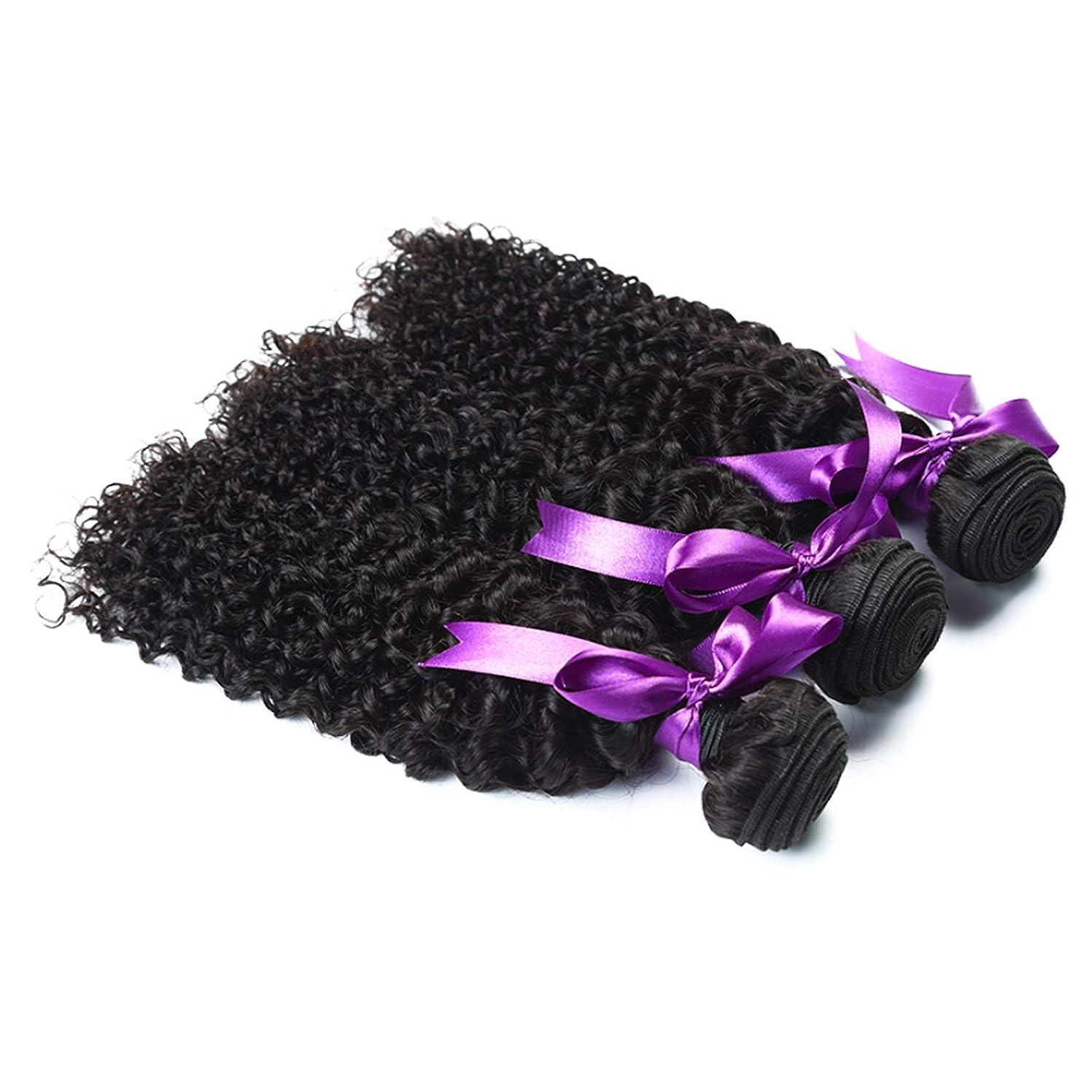 合理的病弱ローラーマレーシアの変態巻き毛3束お得な価格非Remy人間の髪織りエクステンションナチュラルブラック人間の髪の毛のかつら かつら (Length : 24 26 26)