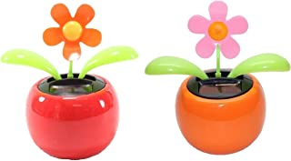 Set of 2 Dancing Flowers ~ 1 Orange 1 Pink Daisy in Assorted Colors Pots Solar Toy Car Dashboard Home Decor Birthday Congratulatory Easter Gift