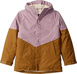 77d019a27 The North Face Kids Freedom Insulated Jacket (Little Kids/Big Kids ...
